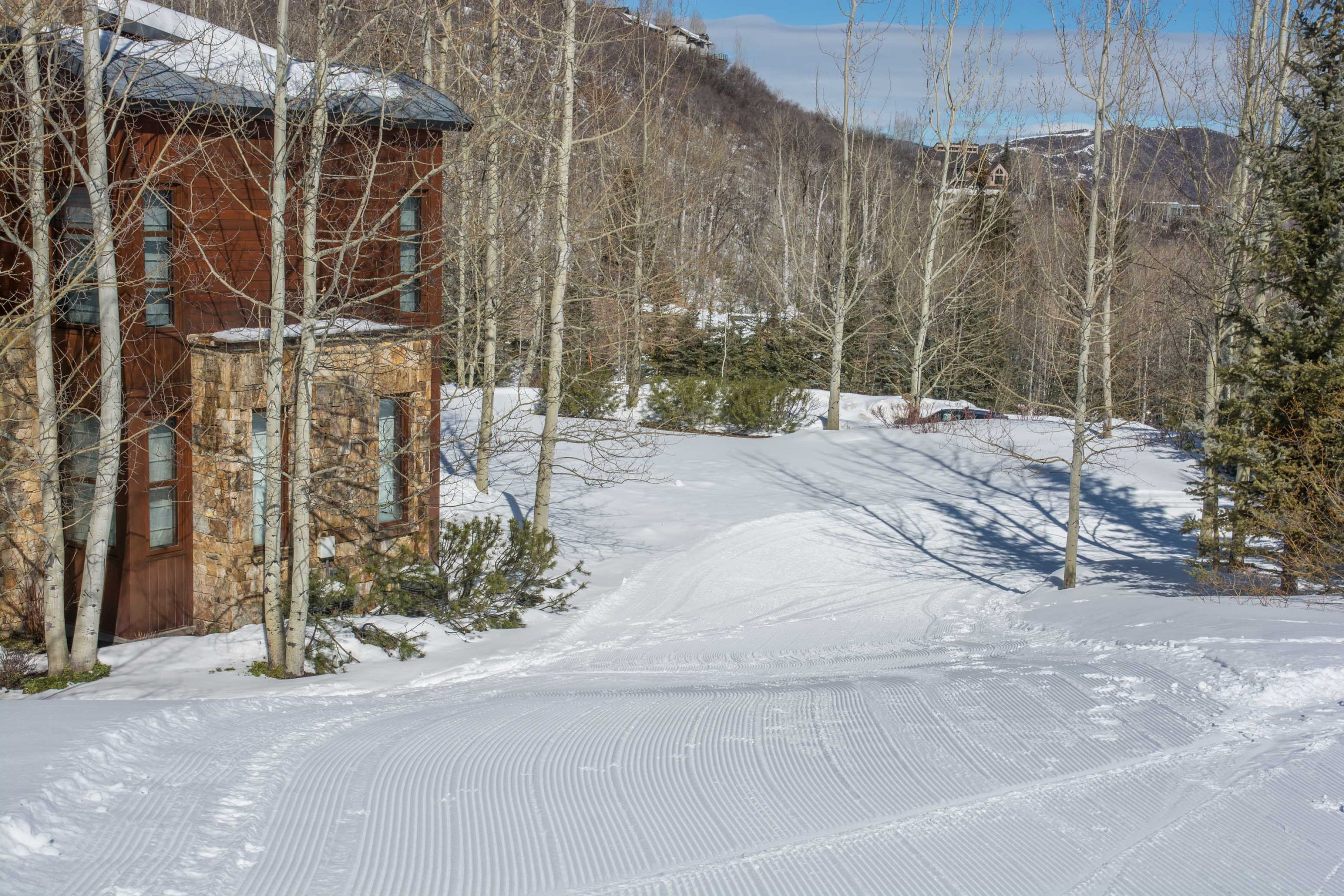 204 Blue Spruce Lane Snowmass Village Photo 47