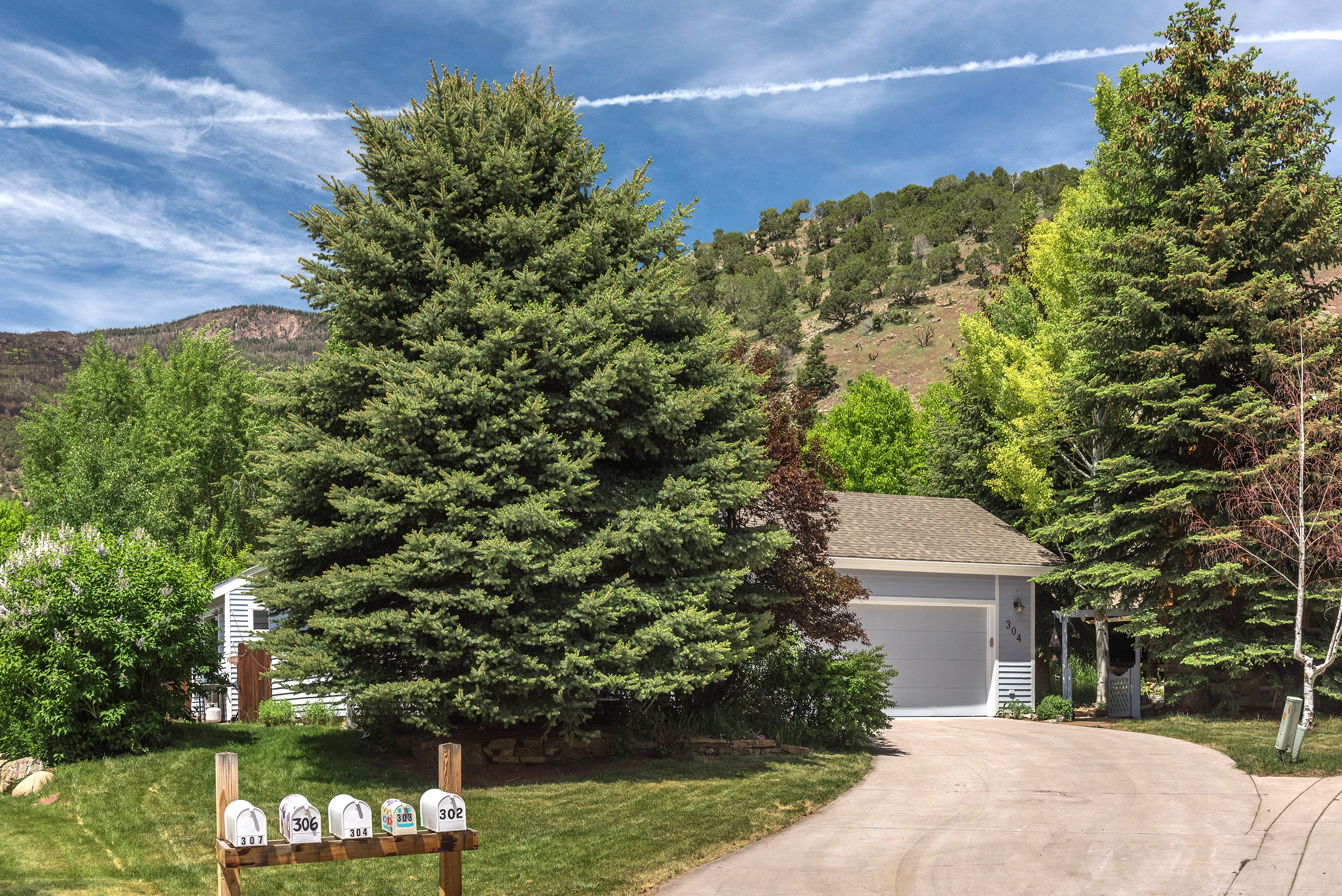 304 Red Tail Drive Basalt Photo 15