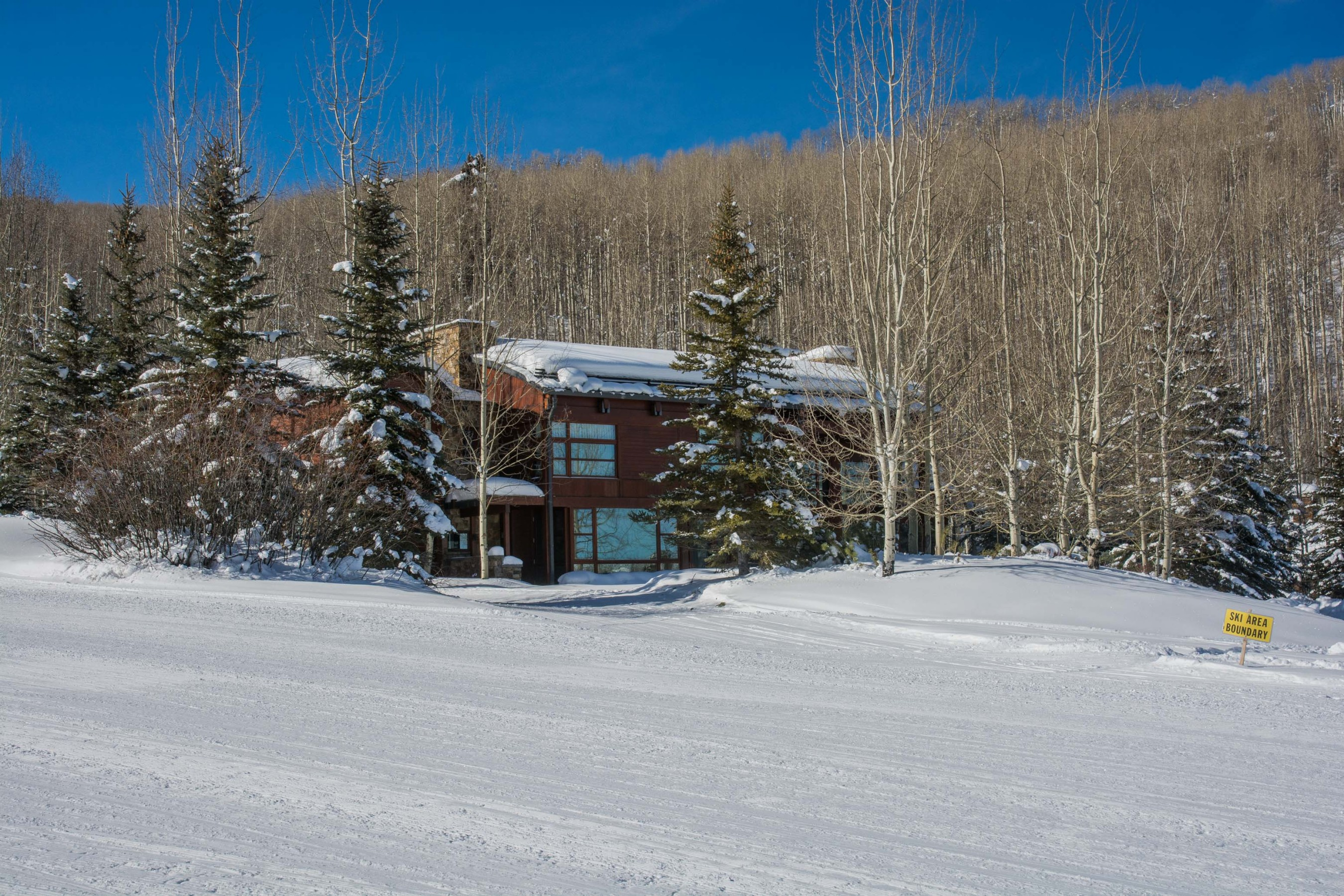 204 Blue Spruce Lane Snowmass Village Photo 7