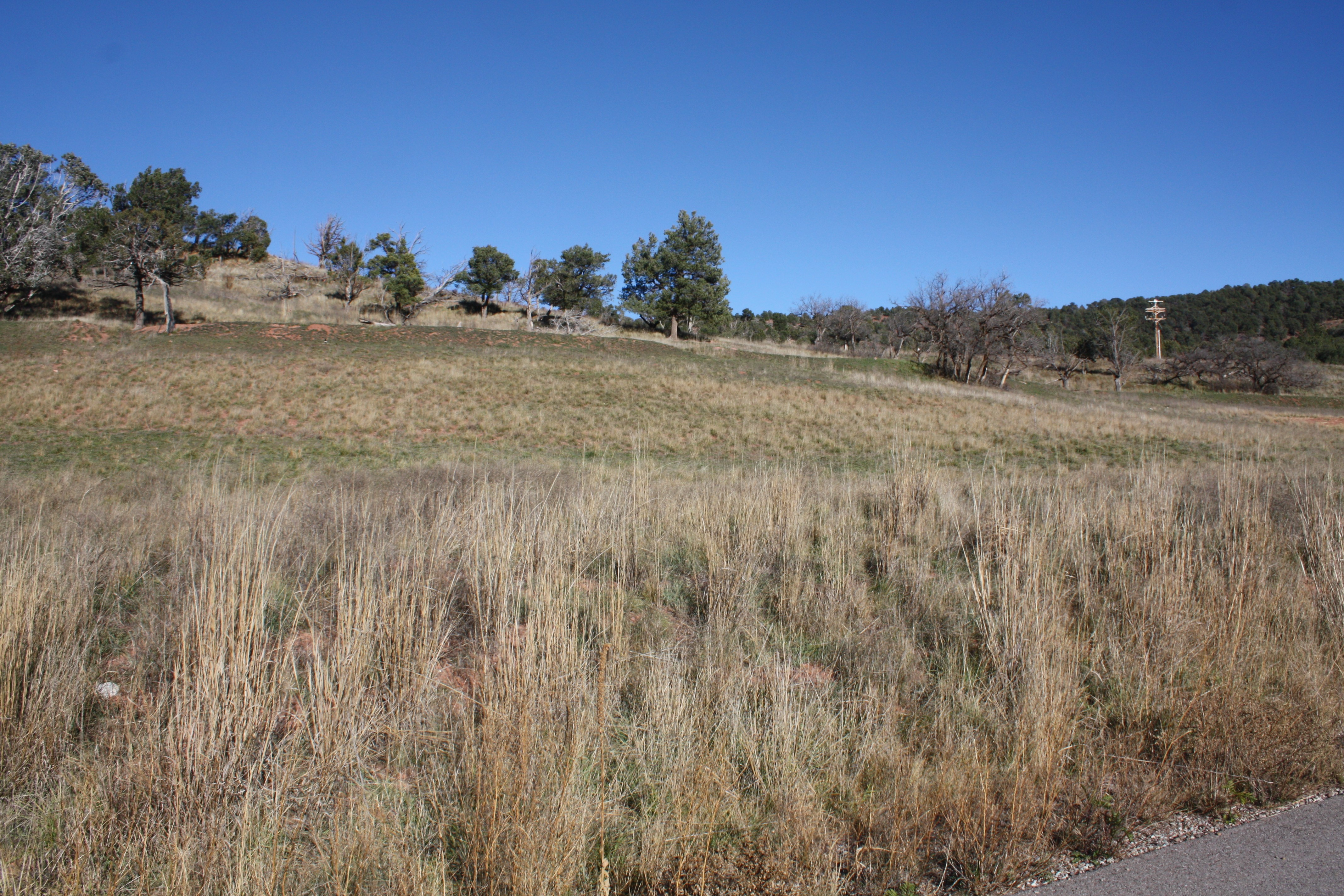 Lot 59 Hidden Valley Glenwood Springs Photo 4