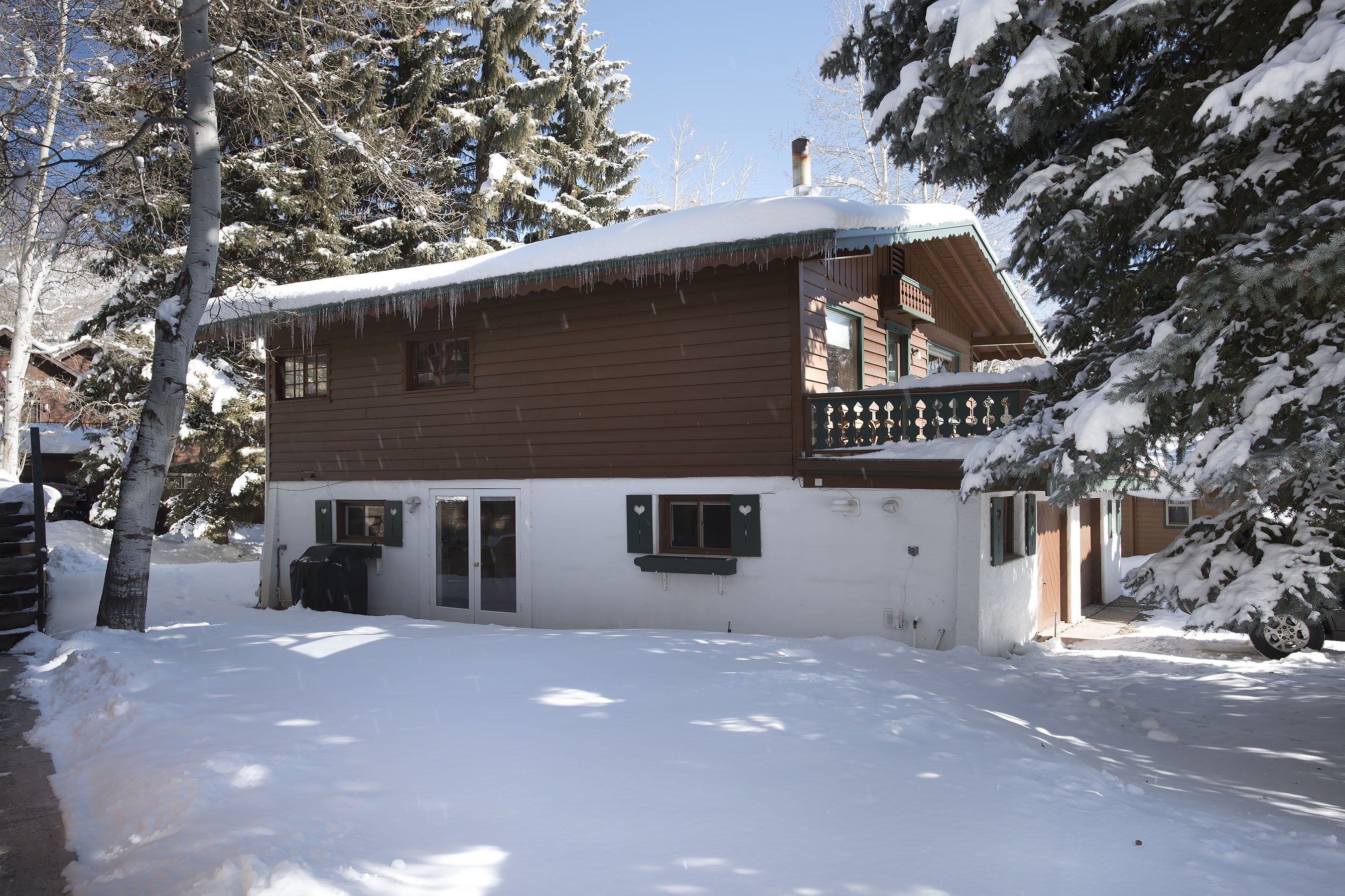 312 W Hyman Avenue Aspen Photo 40