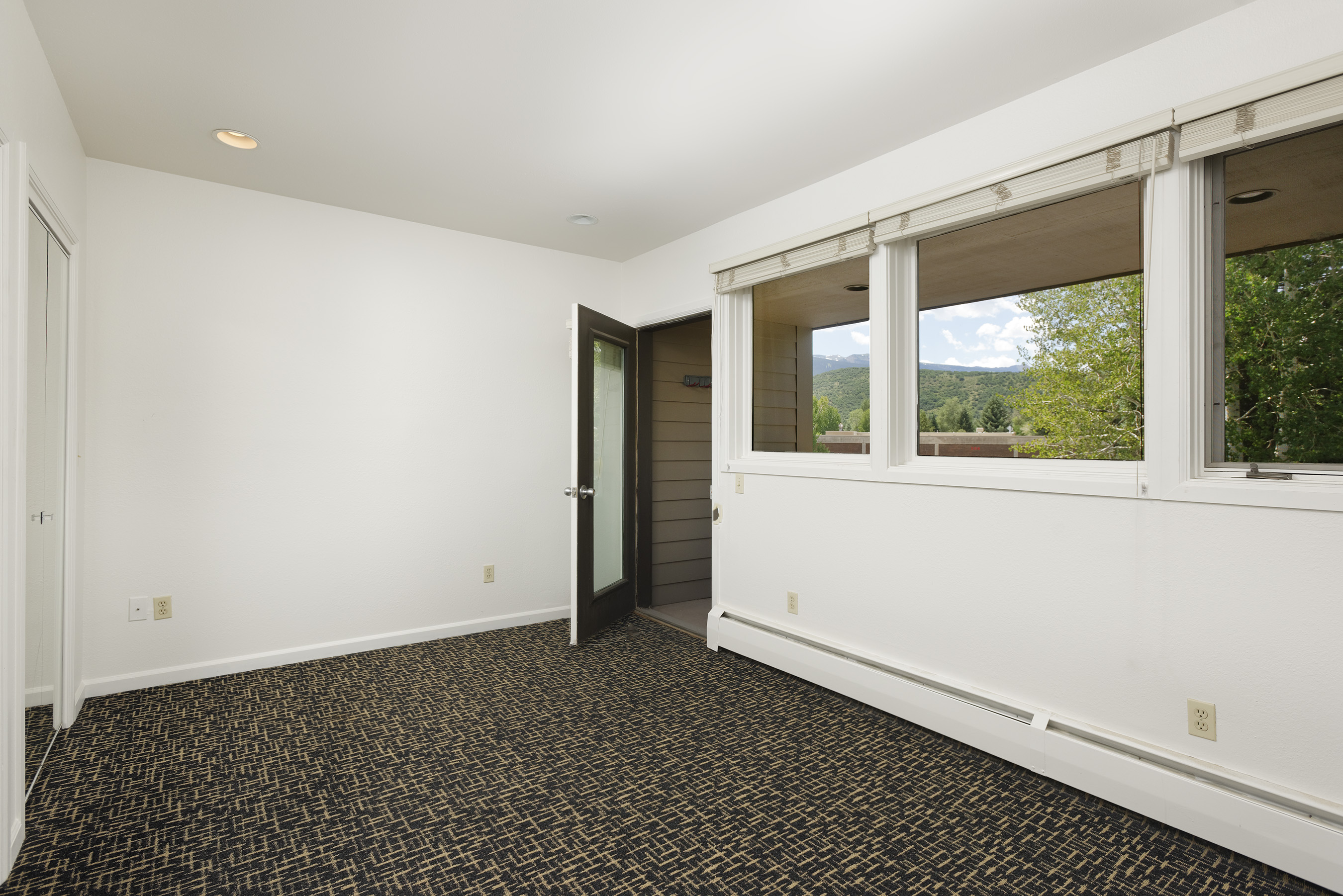 309 Pacific Avenue, Unit #1 Aspen Photo 6
