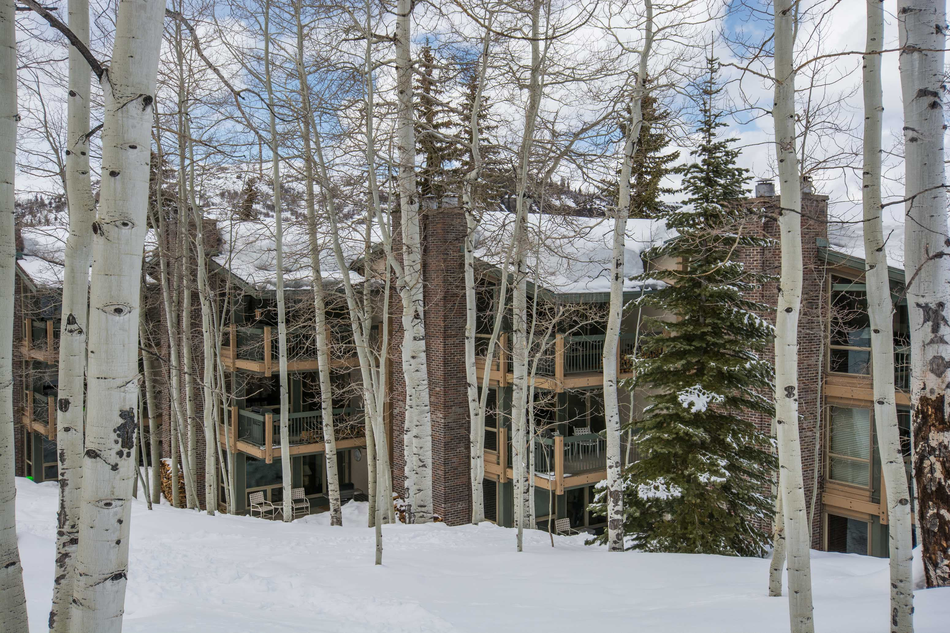 855 Carriage Way, Leaf 702 Snowmass Village Photo 15