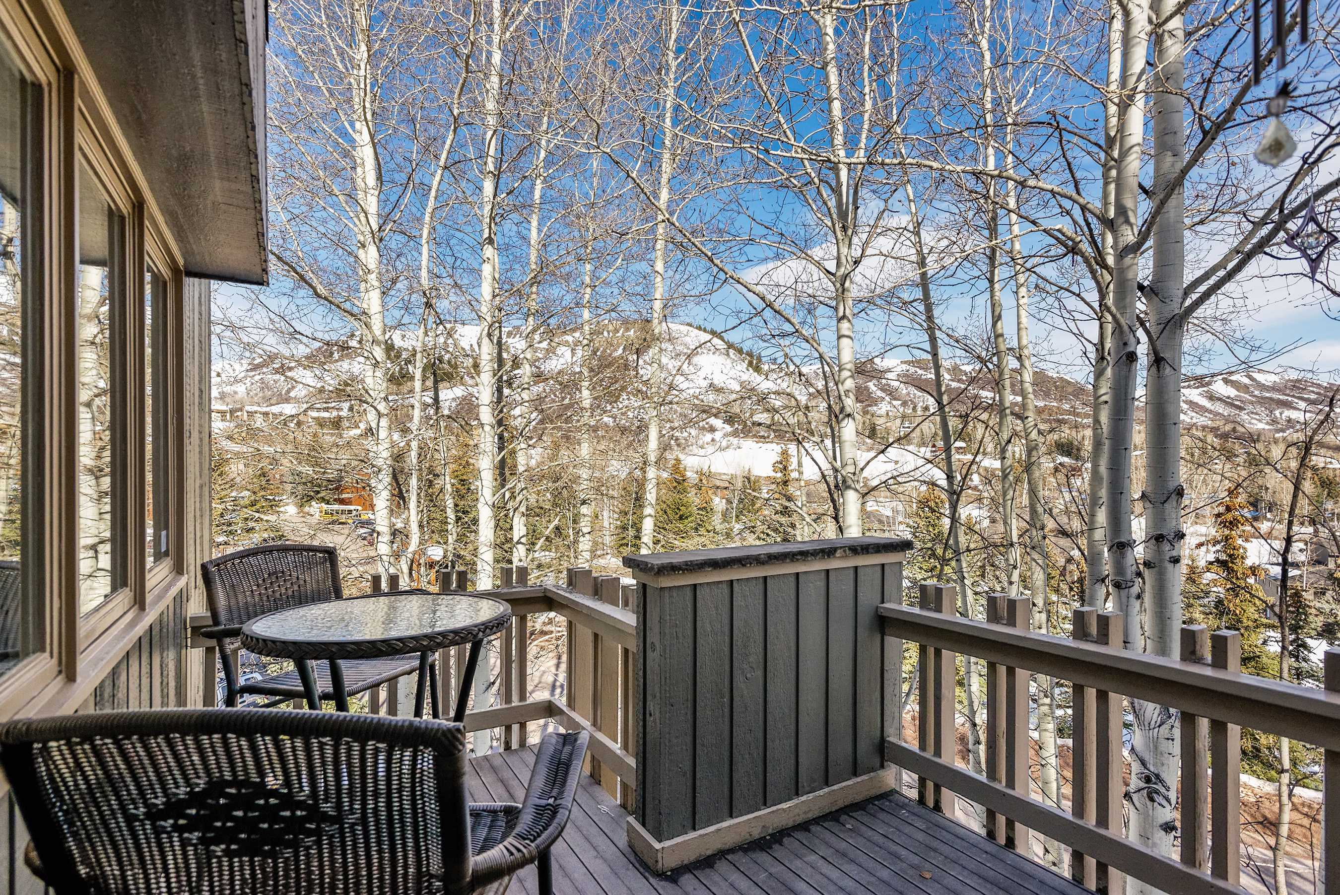 310 Meadow Ranch Snowmass Village Photo 9