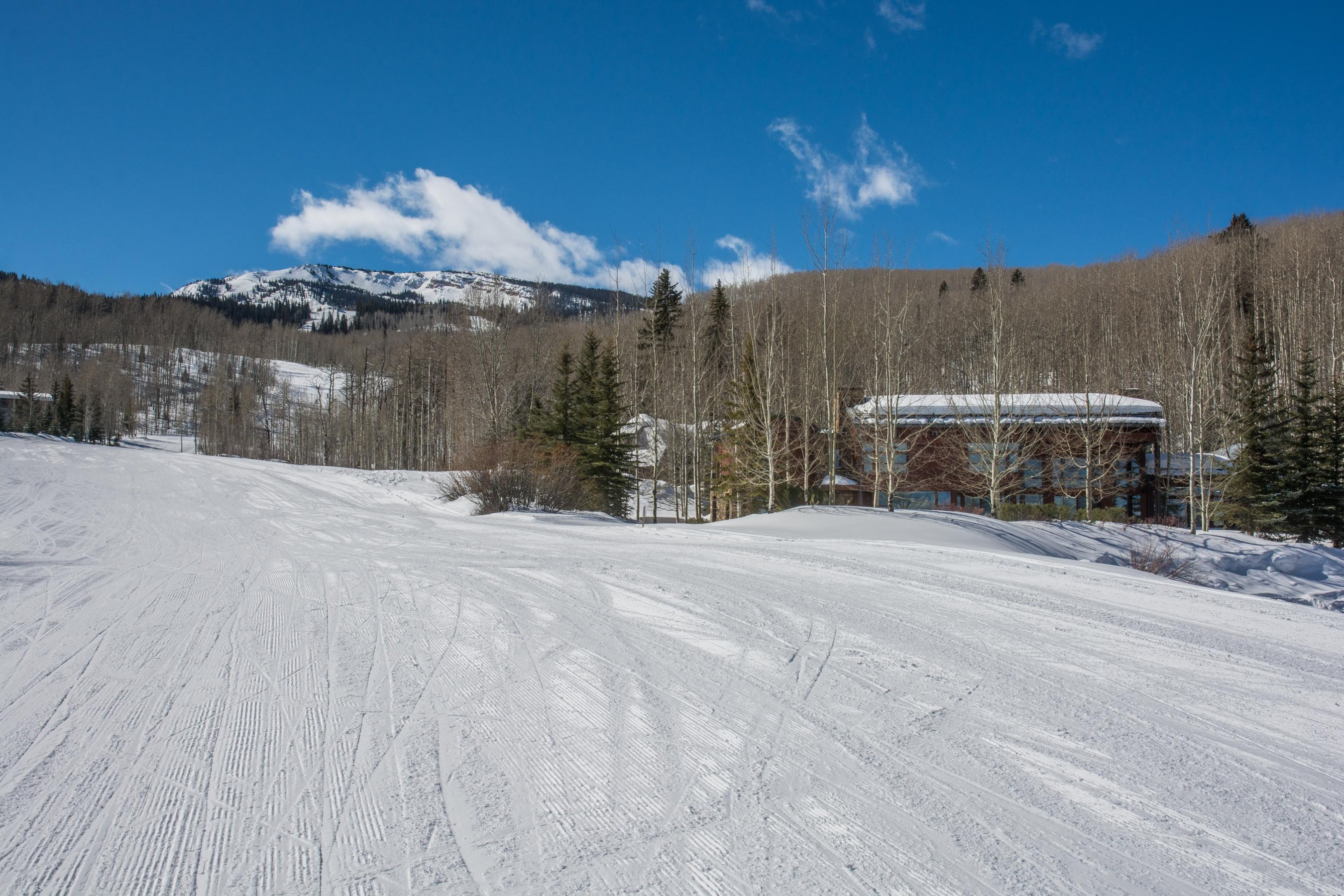 204 Blue Spruce Lane Snowmass Village Photo 43