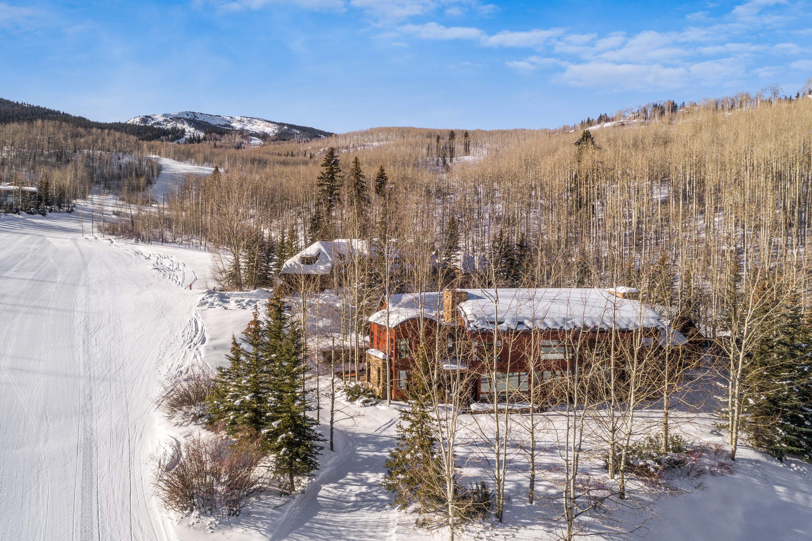 204 Blue Spruce Lane Snowmass Village Photo 4