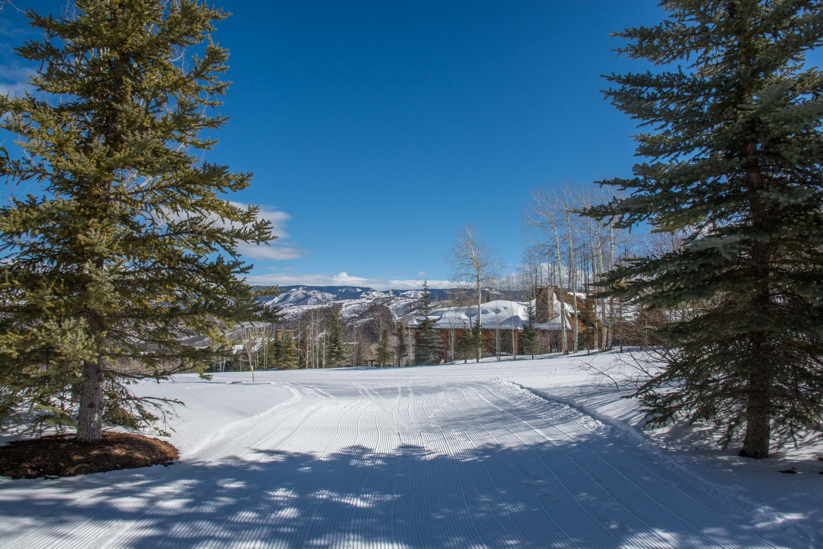 204 Blue Spruce Lane Snowmass Village Photo 48
