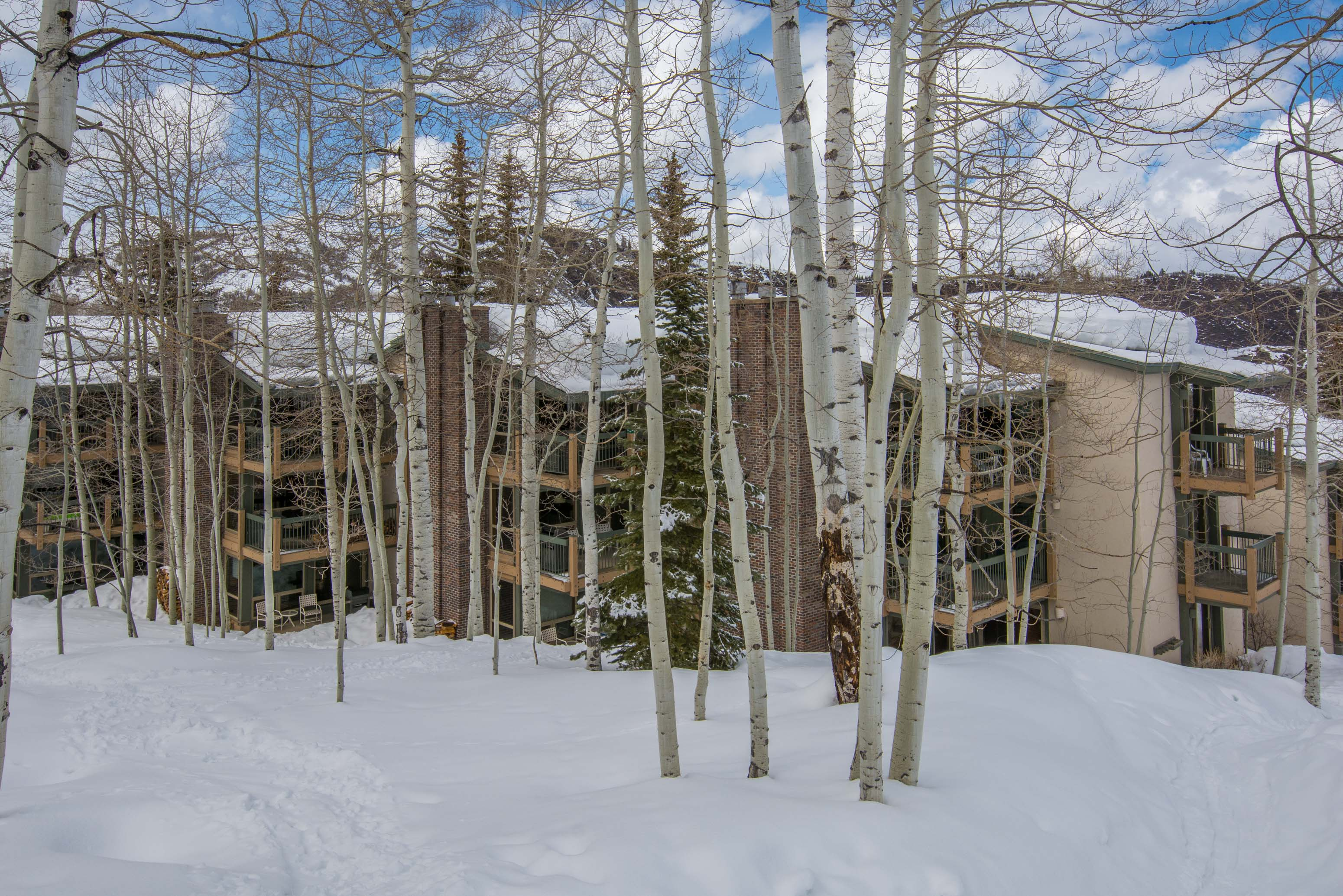 855 Carriage Way, Leaf 702 Snowmass Village Photo 13