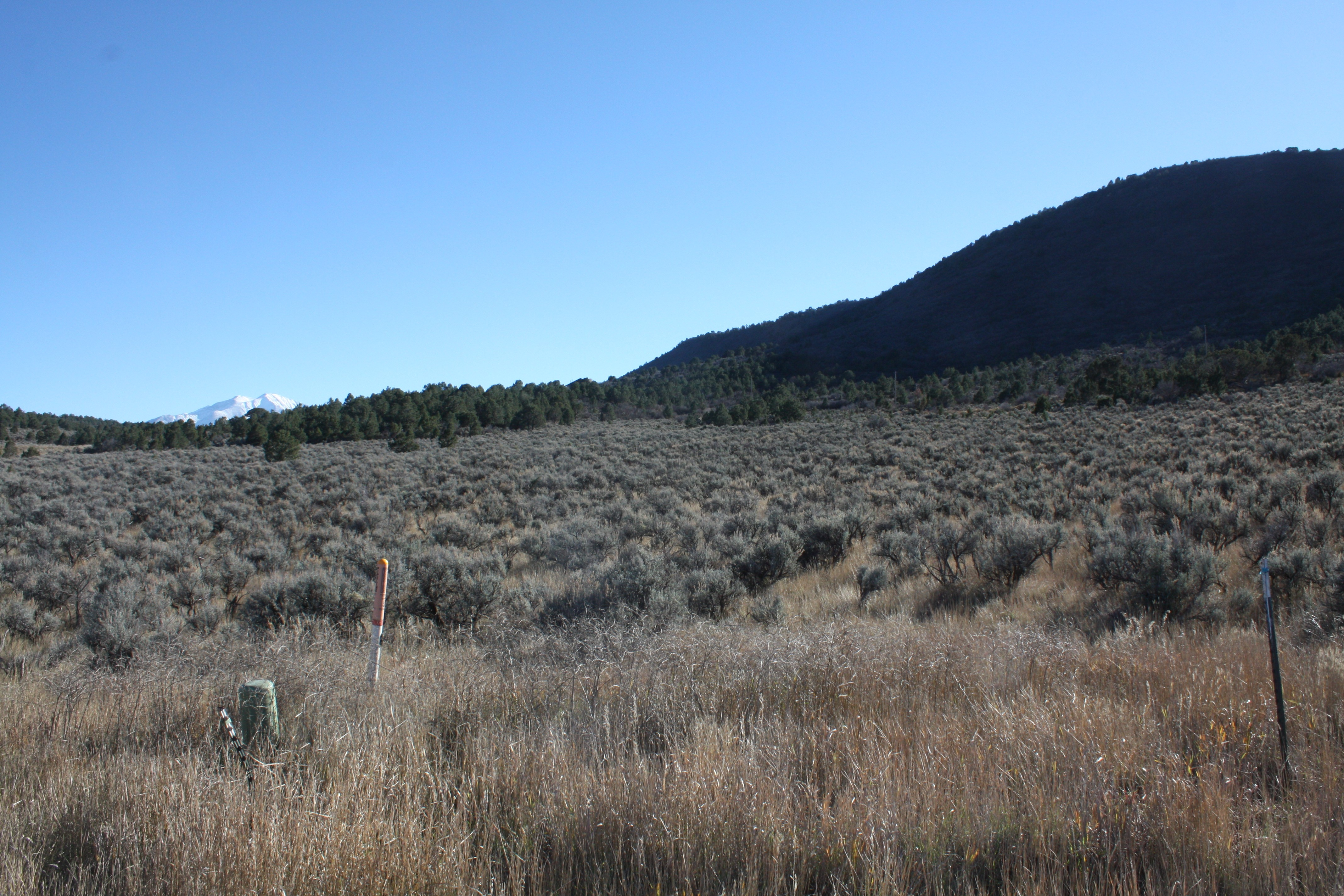 Lot 59 Hidden Valley Glenwood Springs Photo 10