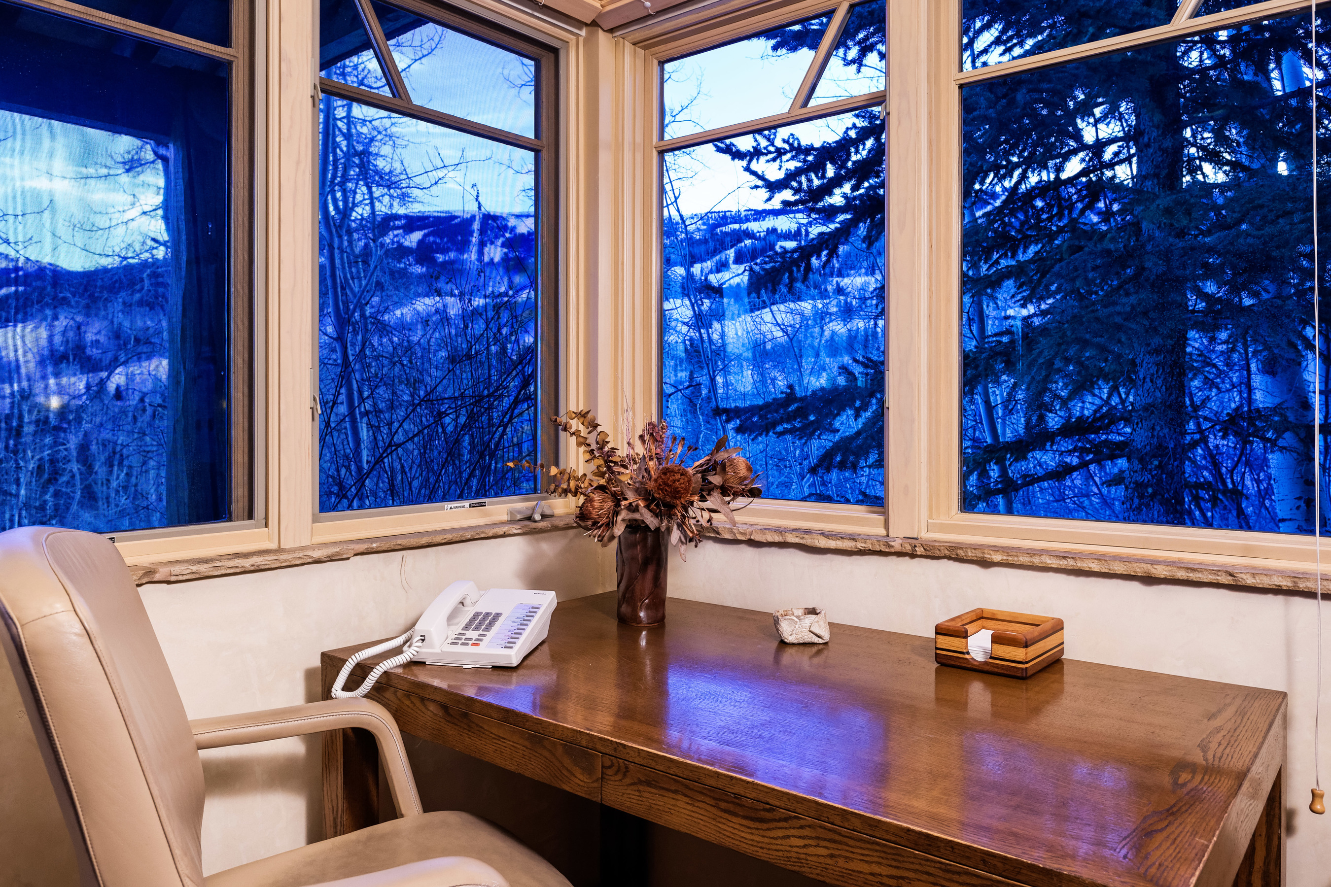 320 Ridge of Wildcat Snowmass Village Photo 38