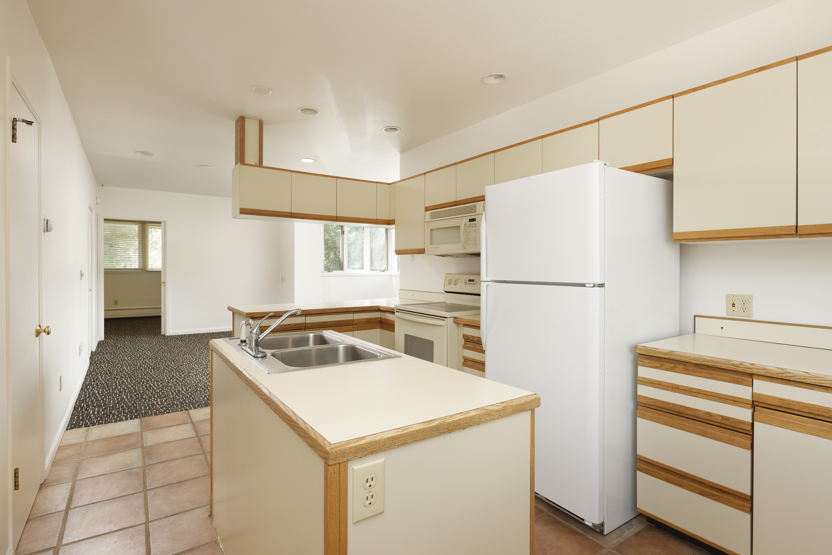309 Pacific Avenue, Unit #1 Aspen Photo 2