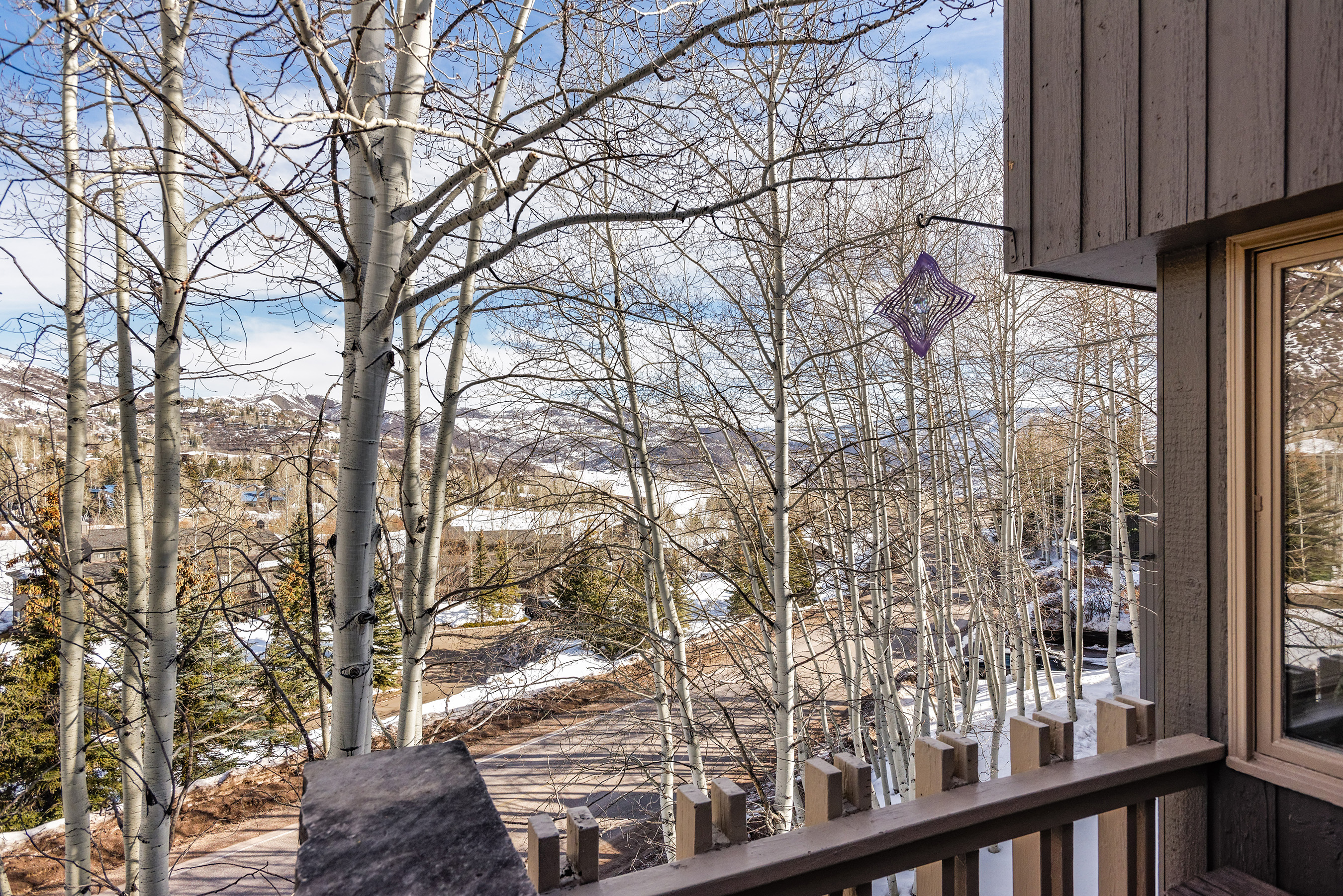 310 Meadow Ranch Snowmass Village Photo 10